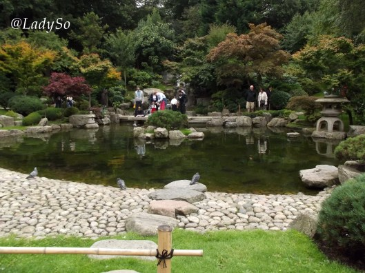 Le petit bassin du Kyoto Garden