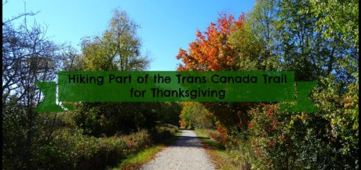 Hiking Part of the Trans Canada Trail for Thanksgiving