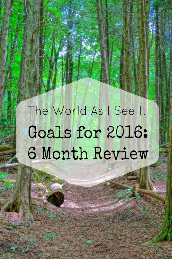 2016 goals six month review