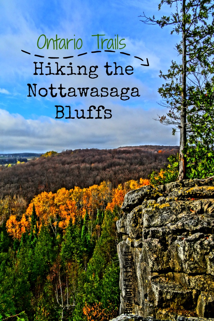 Hiking Nottawasaga Bluffs