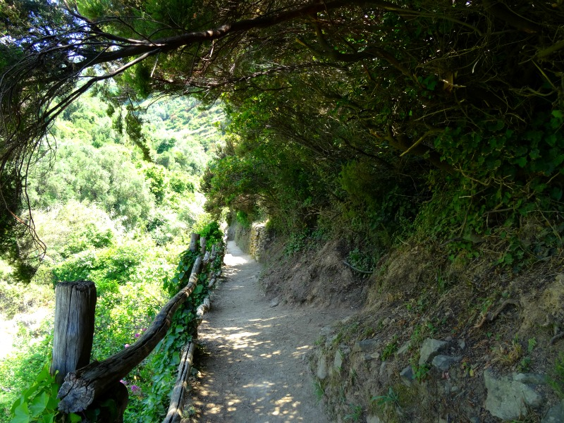 Stairway to Eden: Hiking Cinque Terre Blue Trail