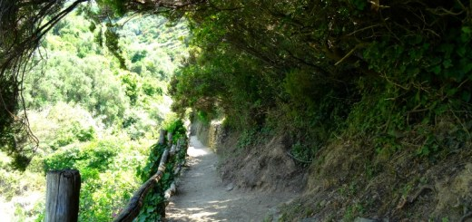 Cinque Terre blue trail