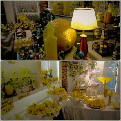 Limoncello shop in Positano, where you could buy not only the liquor itself, but hundreds of other lemon variations too