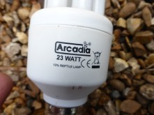 6. Arcadia 23 Watt 10% UV (Important)