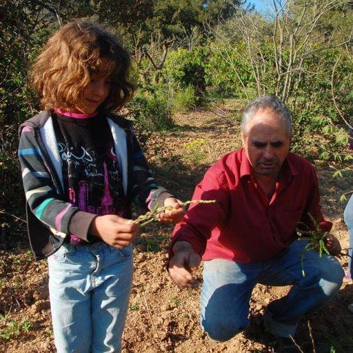 El Viçens le explica cómo conseguir los espárragos
