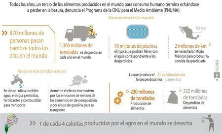 Infografía sobre el despilfarro alimentario