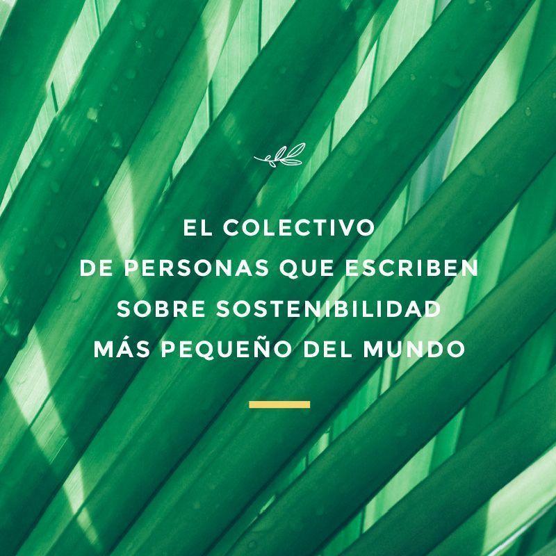 colectivo Hola Eco, ecobloggers de habla hispana