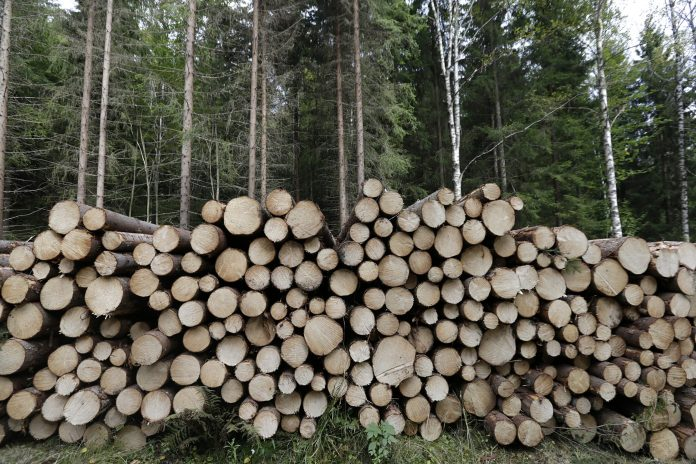The leaked EU proposal does not classify bioenergy as unsustainable