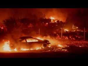 CA Wildfires | CTA Board Member