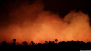 """Videos: El Amazonas arde y el mundo pide acciones para salvar  al """"pulmón"""" del planeta"""