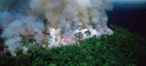"""Amazonia, """"pulmón del mundo"""", lleva tres semanas en llamas; rompe récord"""