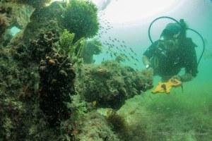 México y España buscarán juntos restos de navío hundido en 1631