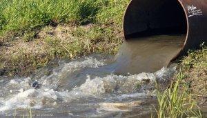 Los científicos confirman que el coronavirus viaja por el drenaje una vez que jalamos la cadena al inodoro
