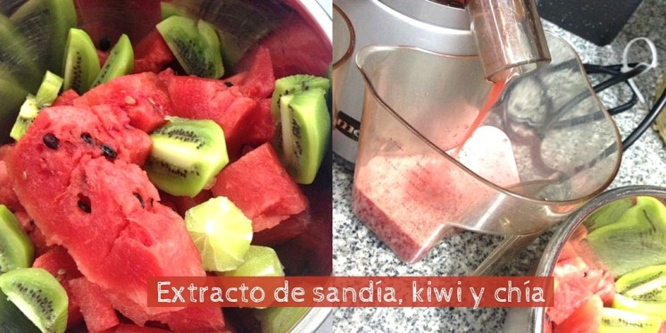 Jugo sandia, kiwi, chia