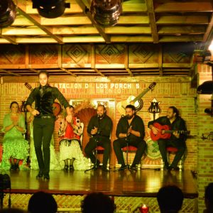 tablao flamenco restaurante la estación de los porches