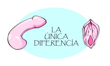 Diferencia entre mujer y hombre