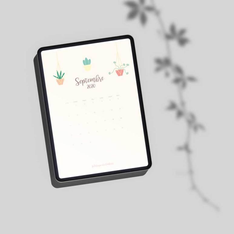 calendrier-succulentes