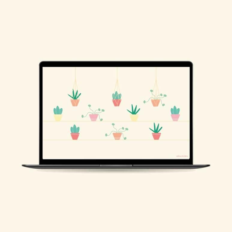 fond-decran-succulentes