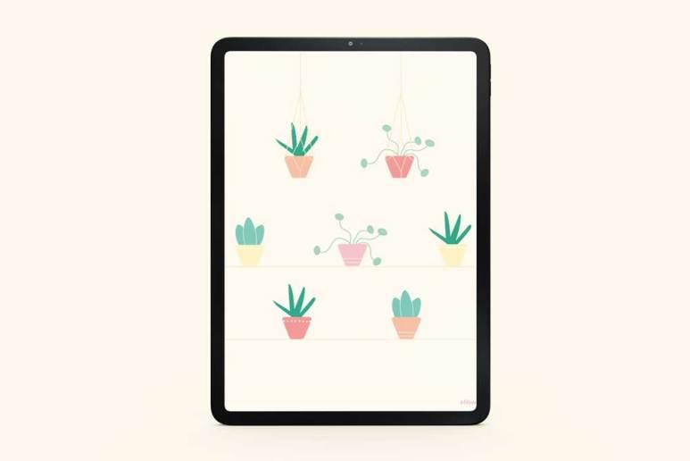 fond-decran-plantes