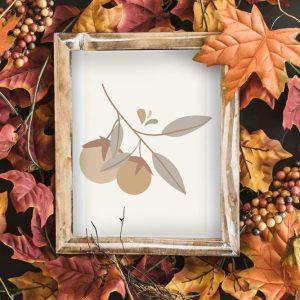 carte-fruit-automne