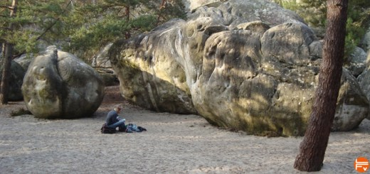 chasing-the-rubbish-fontainebleau