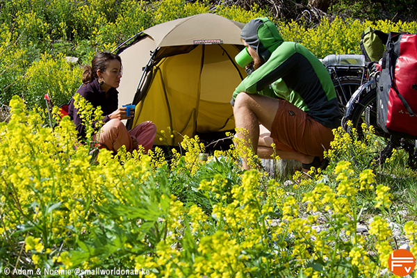 Adam and Noémie sitting in front of their tent, middle of yellow flowers.