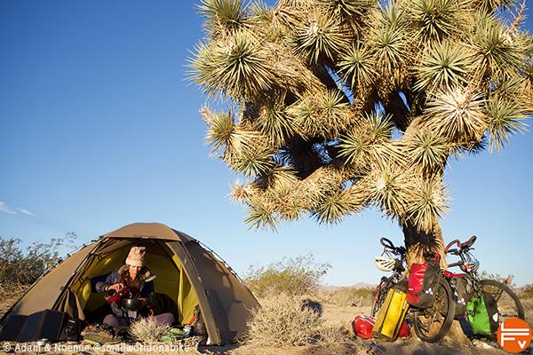 Noémie à l'entrée de sa tente, sous un Yucca géant, dans le parc naturel de Joshua Tree