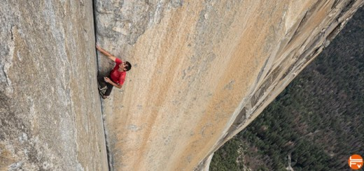 alex-honnold-free-solo-el-cap_climbing