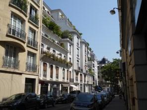 Rue (Sauvage)