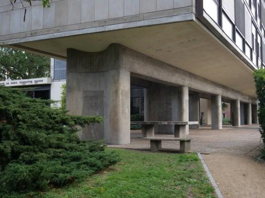 Un sol dégagé et un abri (Le Corbusier)
