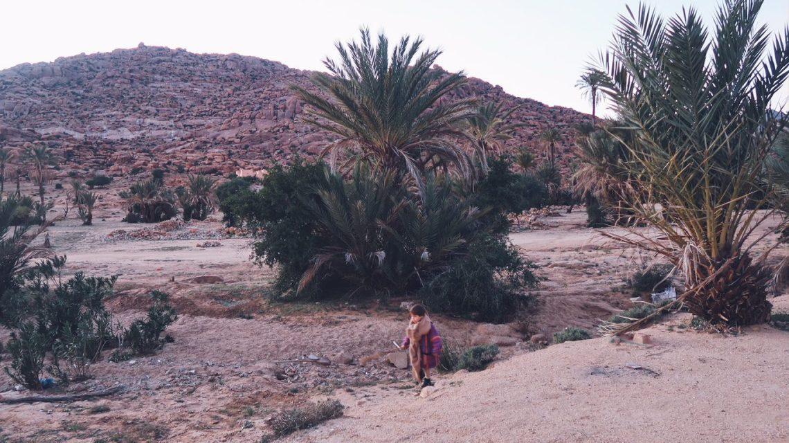 Voyage au Maroc jeux dans la palmeraie de Tafraout