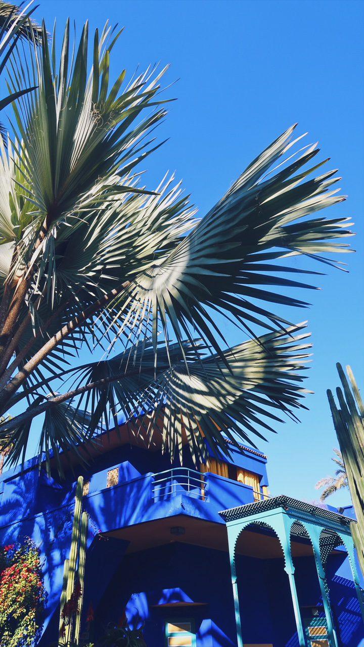 Voyage au Maroc Marrakech maison bleue dans le jardin majorelle