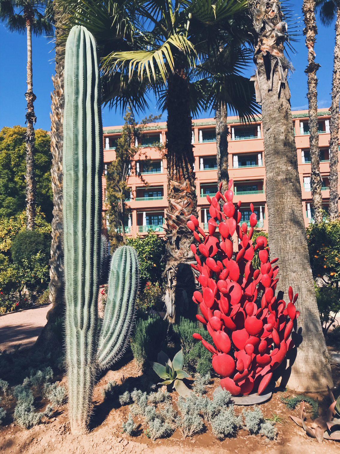 Voyage au Maroc Marrakech la Mamounia jardin avec cactus