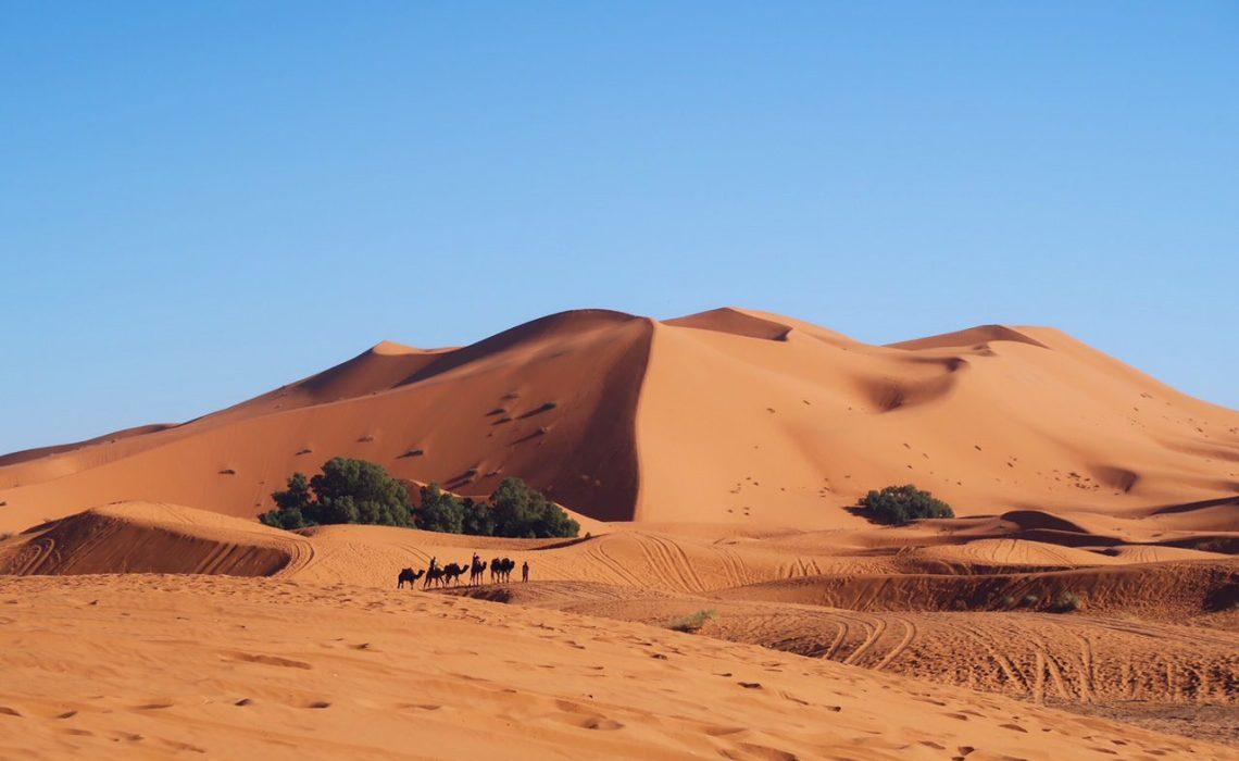 Voyage au Maroc dans le désert de Sahara les dunes Merzouga dromadaires