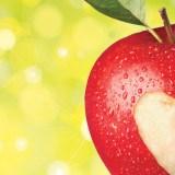 Du 12 au 27 octobre : Pomme de Reinette et Pomme d'Api