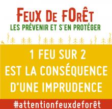 Feux de forêt : les prévenir et s'en protéger