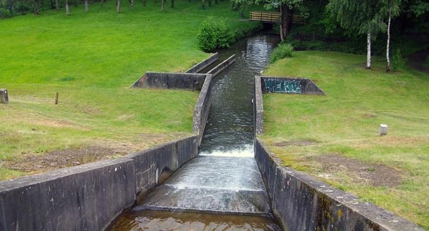 Découverte plan d'eau