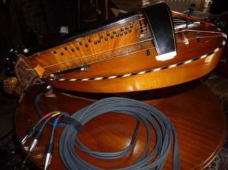 vielle à roue acoustique
