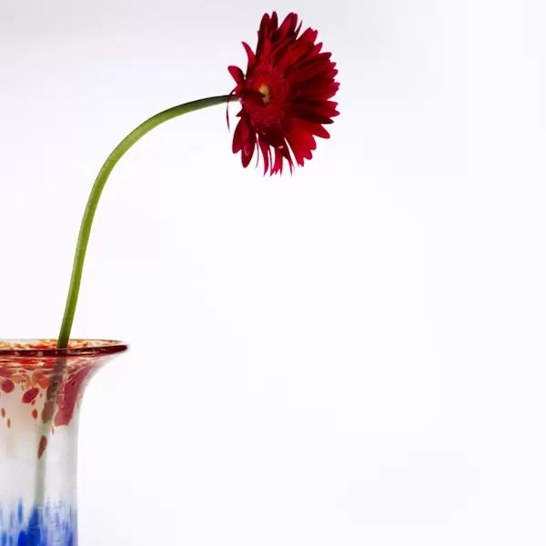 Floreros Jarrones Flower Lafiore.com  - About Lafiore