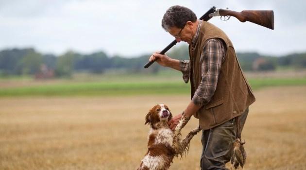 Ouverture de la chasse, dimanche 11 septembre, jusqu'à 14h