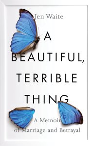 A Beautiful Terrible Thing cover