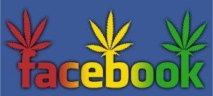 Cannabis Facebook et cinéma