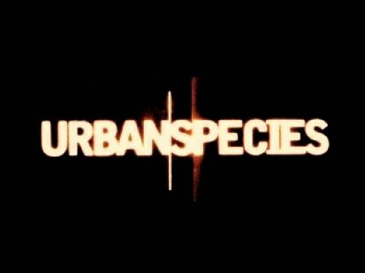 Just listen Urban Species featuring Mc Solaar !