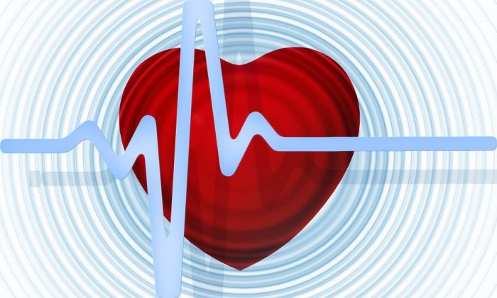 Heart, Curve, Health, Healthy, Pulse, Frequency