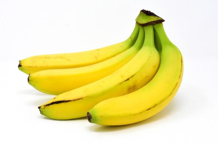C:\Users\Zubair\Downloads\bananas-3117509_1920.jpg