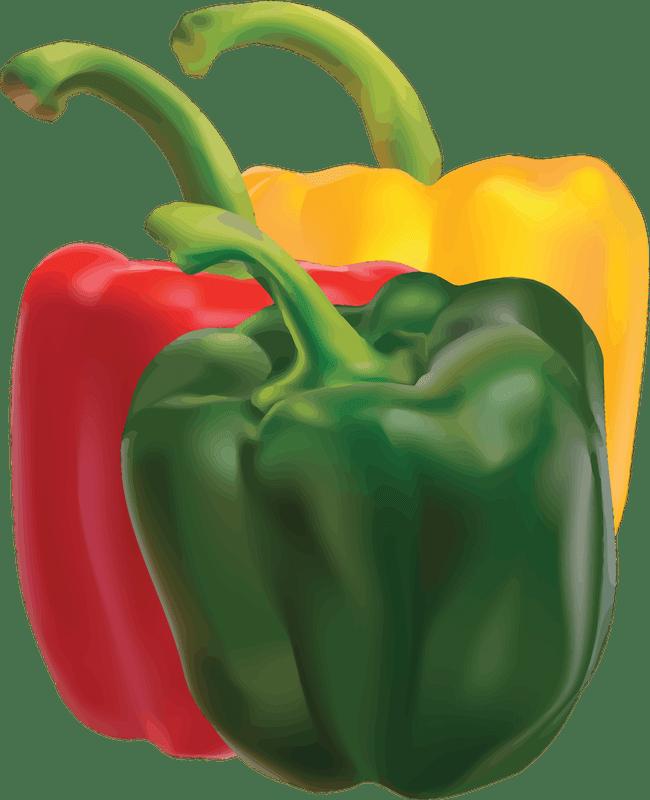 https://www.goodfreephotos.com/cache/vector-images/peppers-vector-art.png