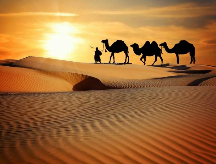G:\Pics Sharing\caravan-desert-safari-dune-camels-ride-1434883-pxhere.com.jpg