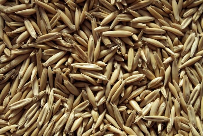C:\Users\Zubair\Downloads\MaxPixel.net-Cereals-Oatmeal-Oats-Seeds-4054667.jpg
