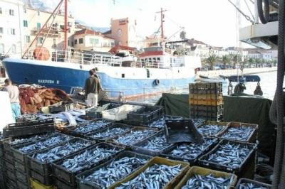 Radionica u ŽK Split o uvođenju transportnog dokumenta u ribarstvu