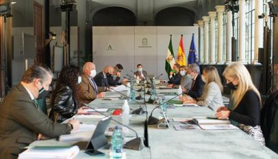 Hoy-se-reúne-comité-de-expertos-en-Andalucía